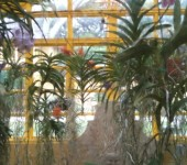 Greenhouse Tours