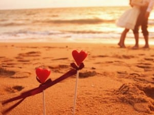 7034645-beach-love-photography