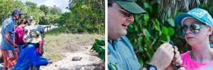 Live Animal Presentation @ Birch State Park