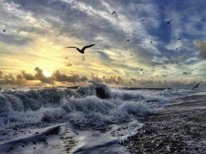 andrew-royston-sunrise-1