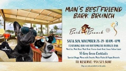 Bark Brunch @ S3 Restaurant