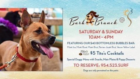 Bark Brunch @ S3 Restaurant   Fort Lauderdale   Florida   United States