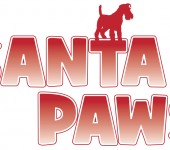 Santa Paws Photos at Galleria Mall