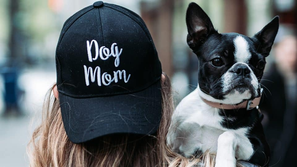 Happy Dog Mom's Day