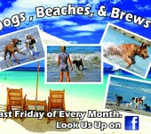 Dogs, Beaches and Brews