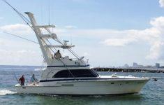 Shooting Start Fishing Charter