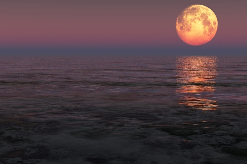South Florida Conditions Favorable For Supermoon My Fort